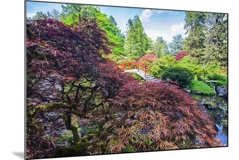 Seattle, Kubota Gardens, Spring Flowers and Japanese Maple with Moon Bridge in Reflection-Terry Eggers-Mounted Photographic Print