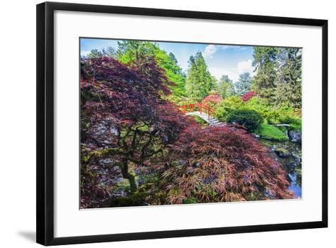Seattle, Kubota Gardens, Spring Flowers and Japanese Maple with Moon Bridge in Reflection-Terry Eggers-Framed Art Print