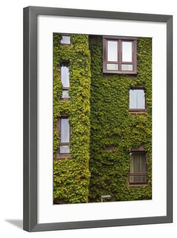 Norway, Bergen. Bryggen Building with Ivy-Kymri Wilt-Framed Art Print