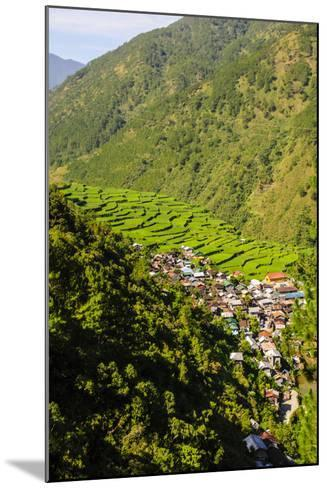 Along the Rice Terraces from Bontoc to Banaue, Luzon, Philippines-Michael Runkel-Mounted Photographic Print