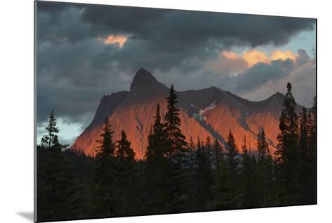 Alpenglow, from Kicking Horse River, British Columbia, Canada-Michel Hersen-Mounted Photographic Print