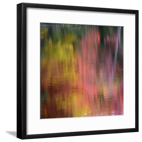 Autumn Reflections, Sheepscot River, Palermo, Maine, USA-Michel Hersen-Framed Art Print