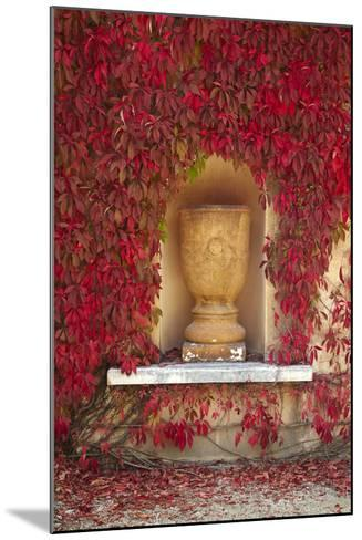 Autumn Color at the Italian Renaissance Garden, Hamilton, Waikato, North Island, New Zealand-David Wall-Mounted Photographic Print