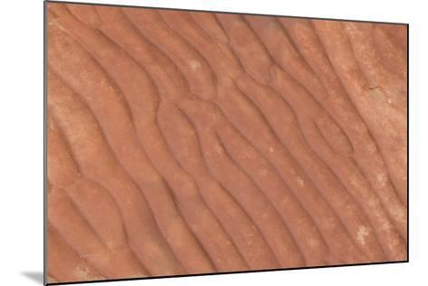 Australia, Watarrka National Park. Kings Canyon, Rim Walk. Detail of Carved Stone Sea Ripples-Cindy Miller Hopkins-Mounted Photographic Print