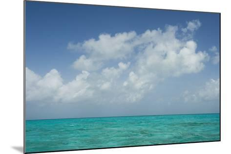 Caribbean Ocean Near Ambergris Caye, Belize-Pete Oxford-Mounted Photographic Print