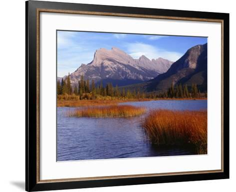Canada, Alberta, Banff National Park, Marsh Grass in Vermilion Lakes and Mount Rundle-John Barger-Framed Art Print