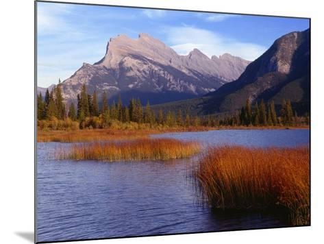 Canada, Alberta, Banff National Park, Marsh Grass in Vermilion Lakes and Mount Rundle-John Barger-Mounted Photographic Print