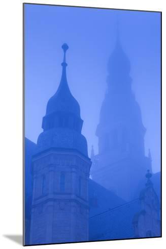 Germany, Rhineland-Pfalz, Speyer, Dom Cathedral, Dawn, Fog-Walter Bibikow-Mounted Photographic Print