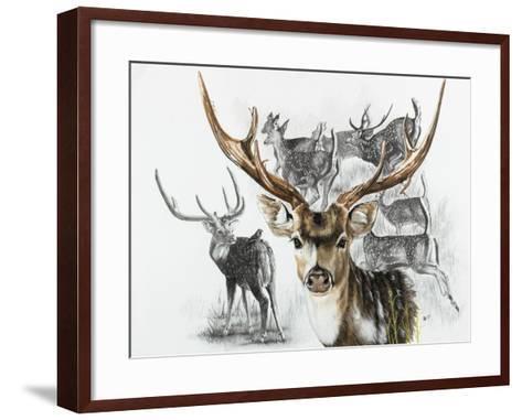 Axis Deer-Barbara Keith-Framed Art Print