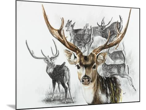 Axis Deer-Barbara Keith-Mounted Giclee Print