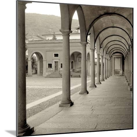 Piedmont IV-Alan Blaustein-Mounted Photographic Print