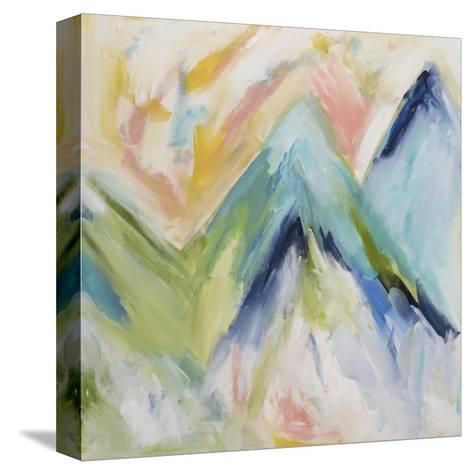 Denver Surprise-Carrie Schmitt-Stretched Canvas Print