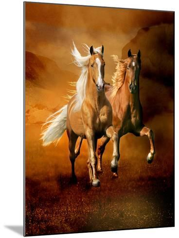 Dream Horses 075-Bob Langrish-Mounted Photographic Print