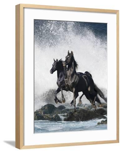Dream Horses 073-Bob Langrish-Framed Art Print