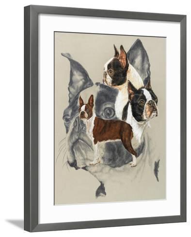 Boston Terrier-Barbara Keith-Framed Art Print