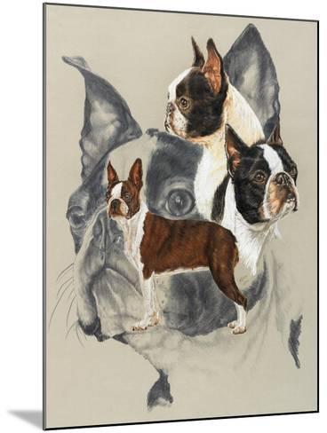 Boston Terrier-Barbara Keith-Mounted Giclee Print