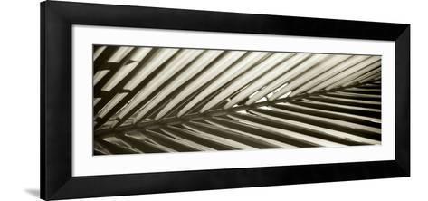 Florison 100-Alan Blaustein-Framed Art Print