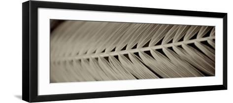 Florison 99-Alan Blaustein-Framed Art Print