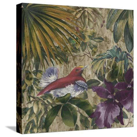 King Bird of Paradise-Bill Jackson-Stretched Canvas Print