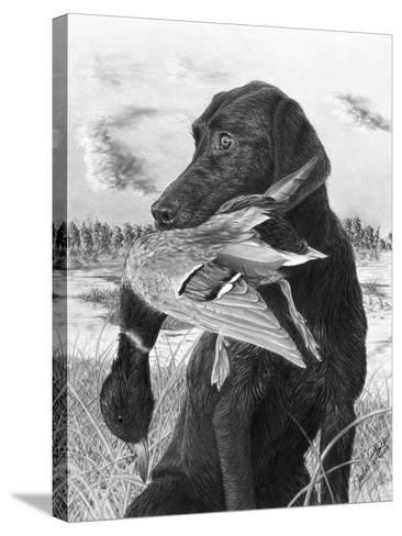 Man's Best Friend-Chuck Black-Stretched Canvas Print