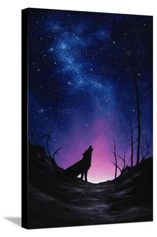 Starry Nights-Chuck Black-Stretched Canvas Print