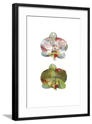 Solitude Vol II-Cayena Blanca-Framed Art Print