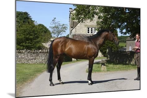 Church Farm UK 006-Bob Langrish-Mounted Photographic Print