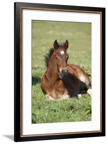 Church Farm UK 001-Bob Langrish-Framed Art Print