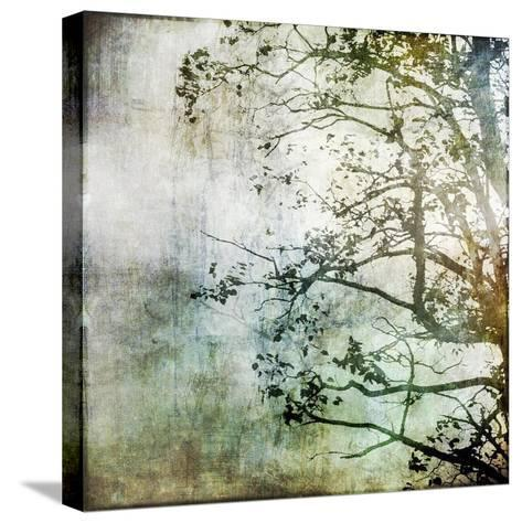Branching Out-Christine O'Brien-Stretched Canvas Print