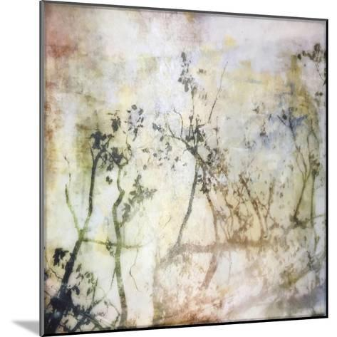 Softly into Spring-Christine O'Brien-Mounted Giclee Print