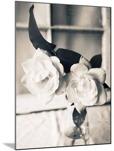 Roses in a Vase BW-Bob Rouse-Mounted Photographic Print