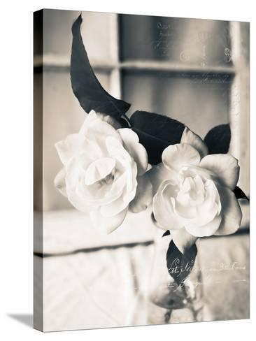 Roses in a Vase BW-Bob Rouse-Stretched Canvas Print