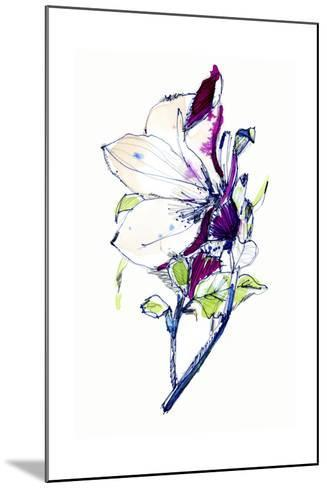 Flower Sketch-Cayena Blanca-Mounted Giclee Print