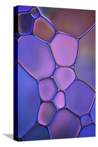 Purple Stained Glass-Cora Niele-Stretched Canvas Print