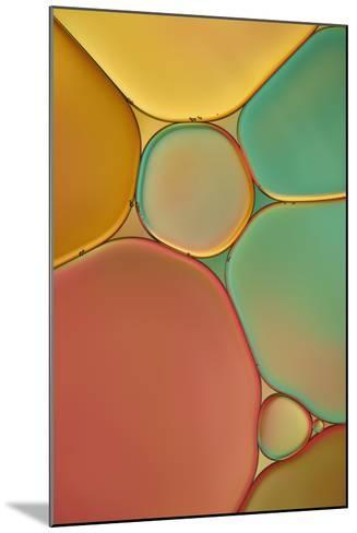 Red Yellow and Green Drops-Cora Niele-Mounted Photographic Print