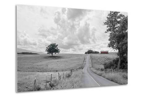 Hilly Road BW-Bob Rouse-Metal Print