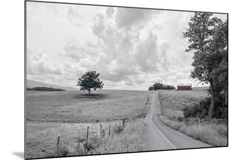 Hilly Road BW-Bob Rouse-Mounted Photographic Print