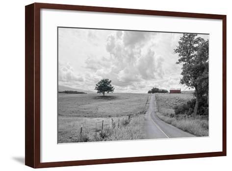 Hilly Road BW-Bob Rouse-Framed Art Print