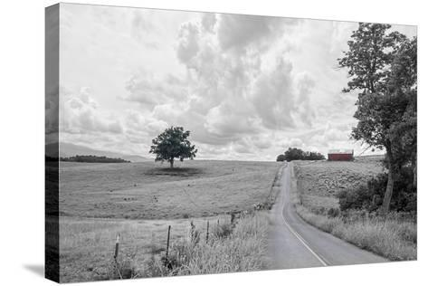 Hilly Road BW-Bob Rouse-Stretched Canvas Print