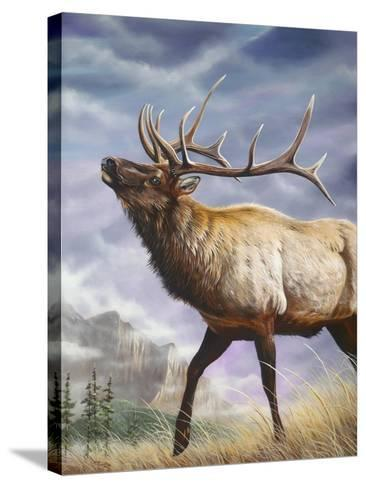 High Country-Geno Peoples-Stretched Canvas Print
