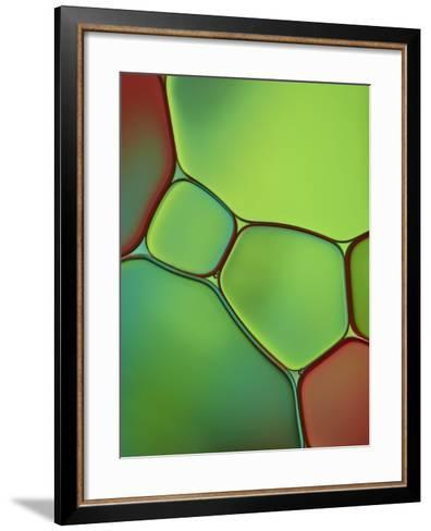 Stained Glass IV-Cora Niele-Framed Art Print