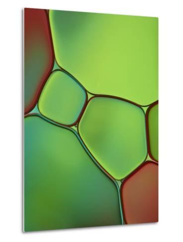Stained Glass IV-Cora Niele-Metal Print