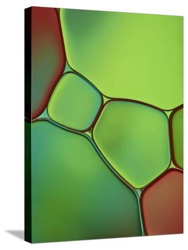 Stained Glass IV-Cora Niele-Stretched Canvas Print