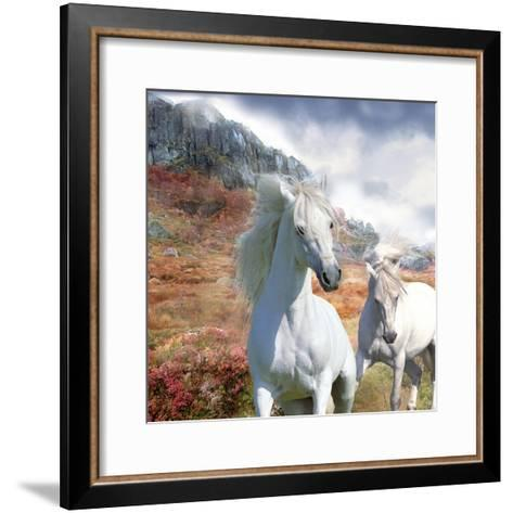 Dream Horses 031-Bob Langrish-Framed Art Print