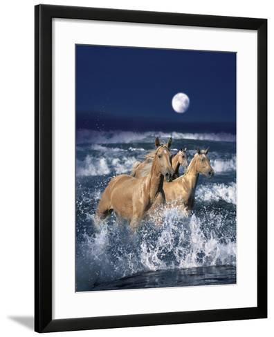 Dream Horses 036-Bob Langrish-Framed Art Print