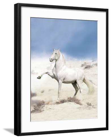 Dream Horses 063-Bob Langrish-Framed Art Print