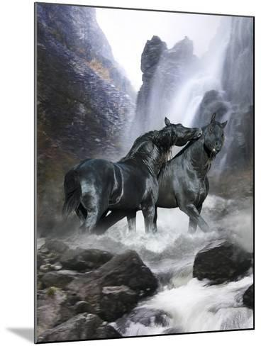 Dream Horses 065-Bob Langrish-Mounted Photographic Print