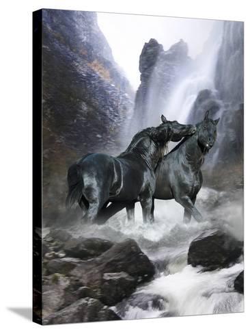 Dream Horses 065-Bob Langrish-Stretched Canvas Print