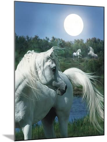 Dream Horses 066-Bob Langrish-Mounted Photographic Print