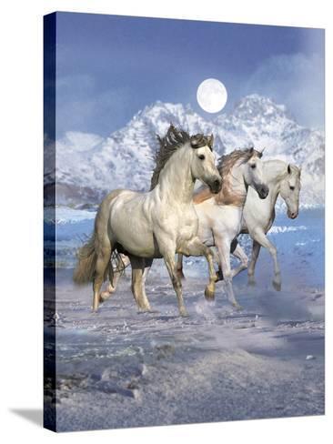 Dream Horses 061-Bob Langrish-Stretched Canvas Print